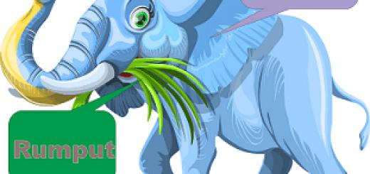 rumput gajah