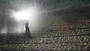 pupuk organik cair di pedesaan masih belum familiar