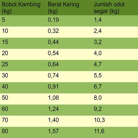 jumlah minimal rumput odot per hari untuk penggemukan kambing