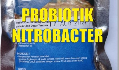 cara membuat probiotik nitrobacter