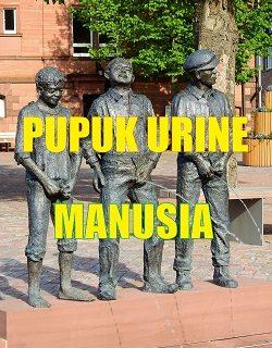 pupuk urine manusia