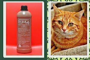 em4 peternakan untuk kucing
