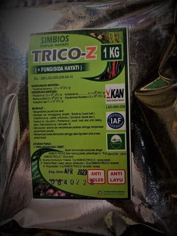 manfaat trichoderma pada tanaman cabe