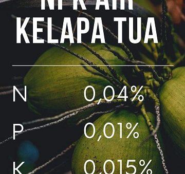 cara membuat pupuk organik dari air kelapa