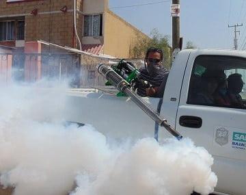 top pest control services