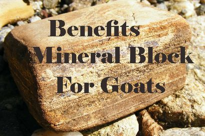 benefits of mineral block for goats